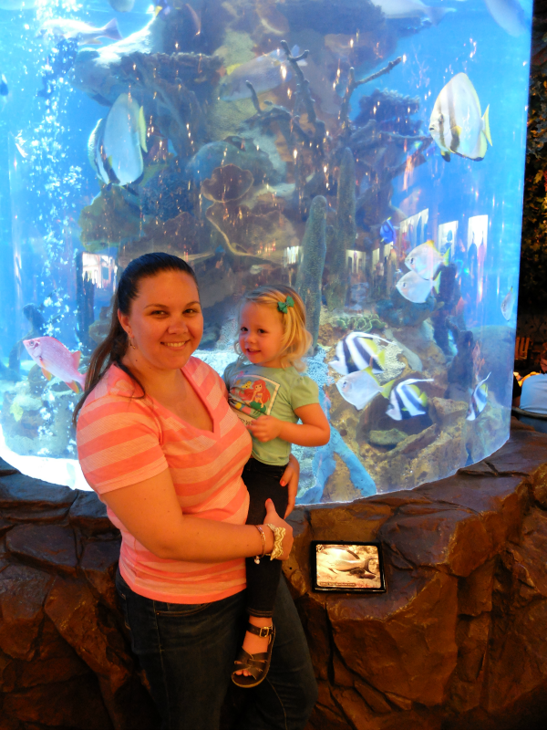 Disney Springs - Rainforest Cafe