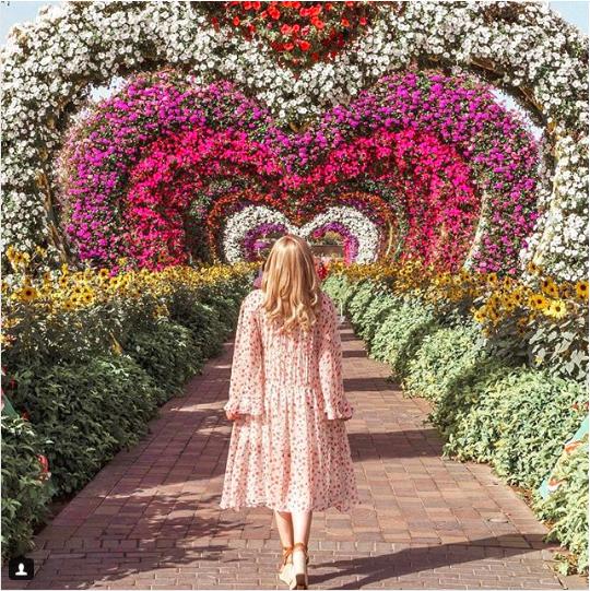 Miracle Garden w Dubaju, Dubaj kwiaty na pustyni, Dubaj, co zobaczyć w Dubaju, przewodnik po Dubaju, Dubaj gdzie zrobić selfie