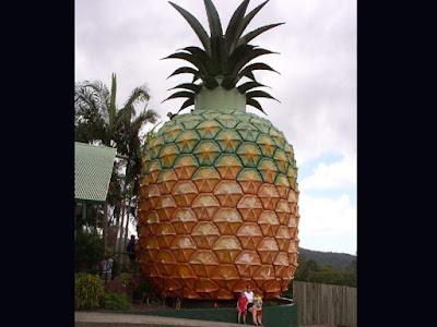 The Big Nanas... di dekat Woombye Nambour, Queensland.
