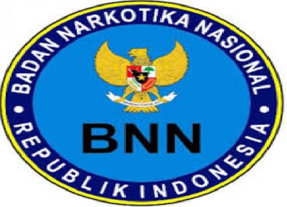 lowongan non cpns bnn, lowongan bnn, rekrutmen bnn ri