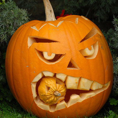 Thinking Girl Wallpaper Halloween Pumpkin Pictures Online News Icon