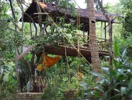 rumah pohon di taman kupu-kupu gita persada lampung