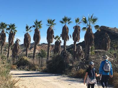 Nos vamos de excursión, embalse de Elche, trekking, senderismo, salida en familia, salida al campo, caminata,