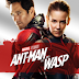 Download Ant-Man and the Wasp (2018) Dual Audio Hindi Dubbed