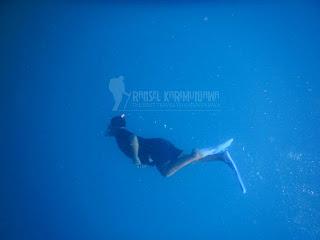 karimun jawa diving