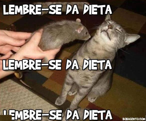 Loucos Hilarios: Imagens Engraçadas Facebook 40