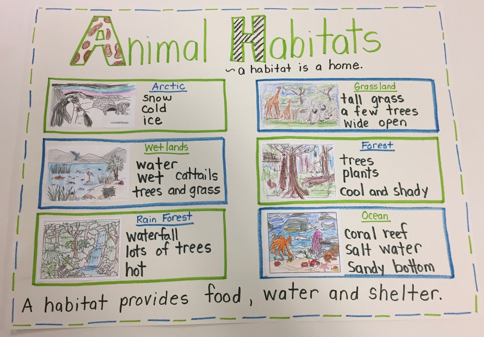 Animal Habitat Worksheets For 2nd Grade To Watch   Printable Worksheets and  Activities for Teachers [ 1114 x 1600 Pixel ]