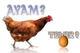 Ayam atau Telur Mana yang Lebih Dulu? Inilah Jawabannya