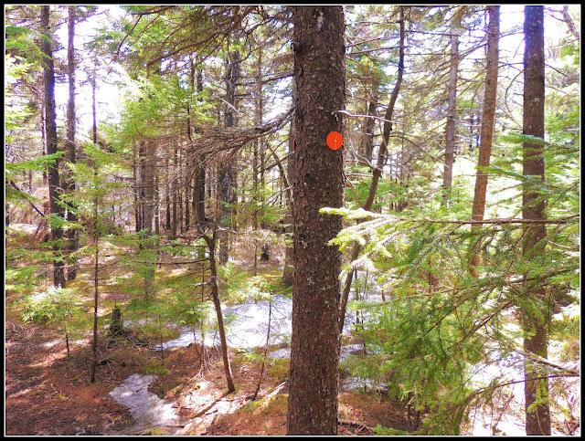 Señales del Monadnock State Park (NH)