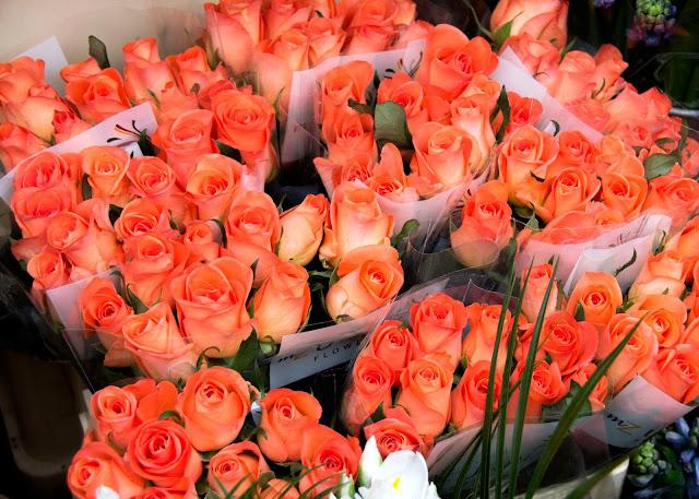 Gorgeous orange roses