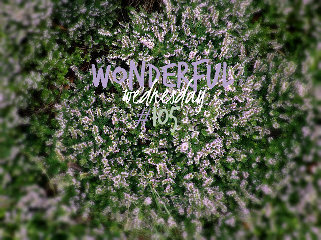 Wonderful Wednesday #105