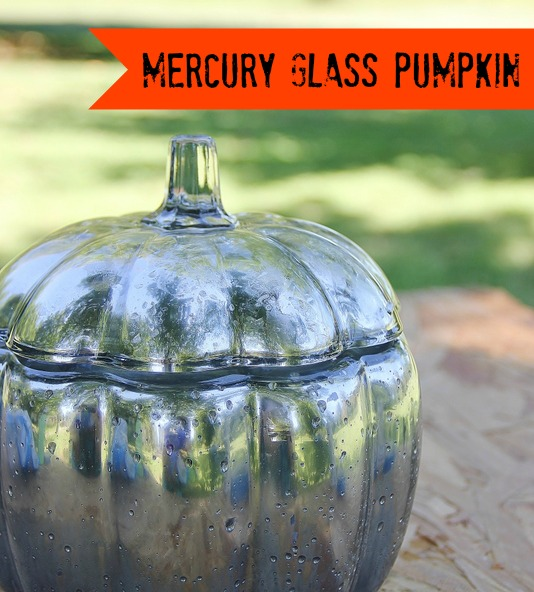 DIY Mercury Glass Pumpkin Tutorial from Thistlewood Farms