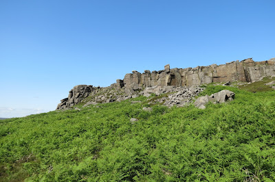 A forest of thick bracken with the gritstone edge above it.