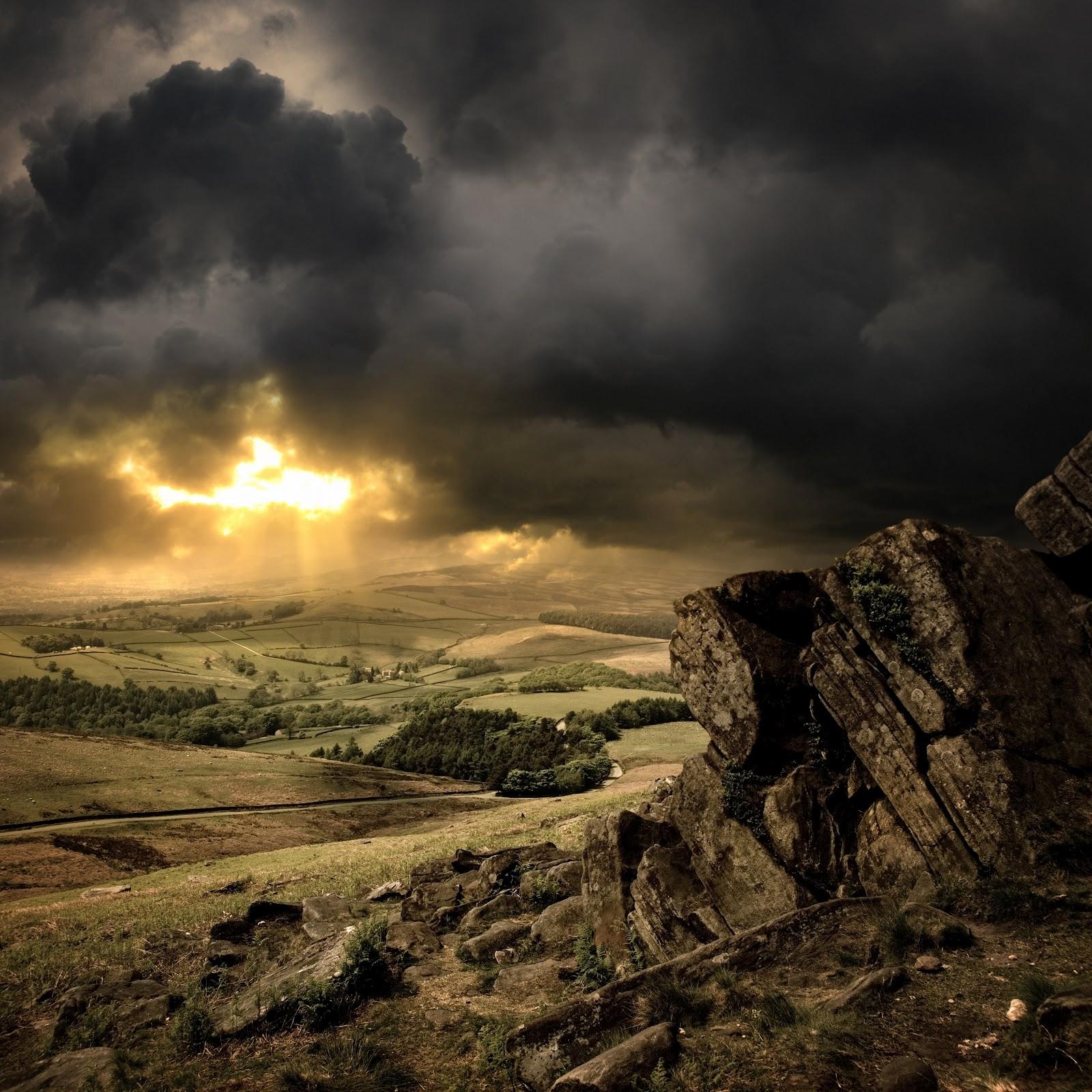 Nature Shutterstock