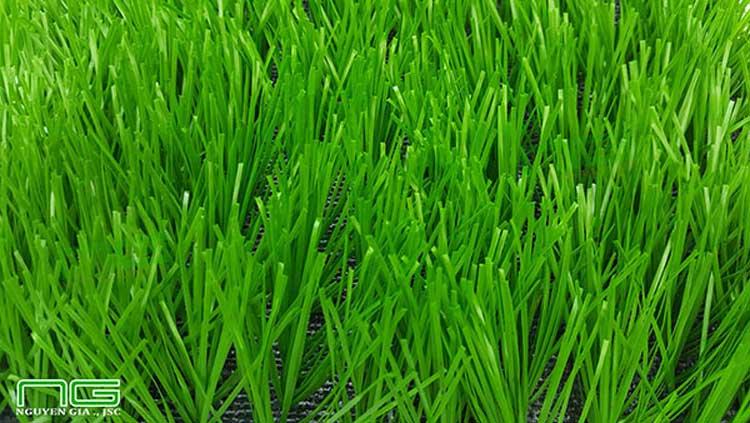 cỏ nhân tạo chất lượng