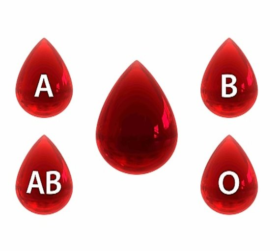 What Your Blood Type Says About Your Health and Personality