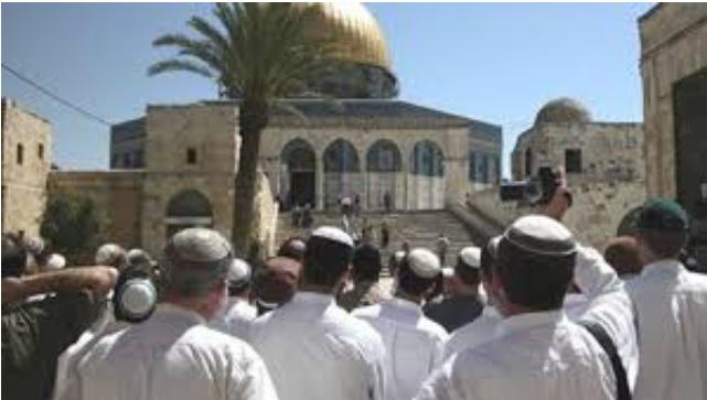 معلومات حصرية للطريقة التي يتبعها اليهود في موافضاتهم حول أي قضية شاهد الفيديوا