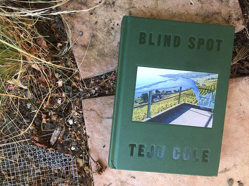 Mind The Gap Little Leaps Book Art Amp Teju Cole S Blind Spot