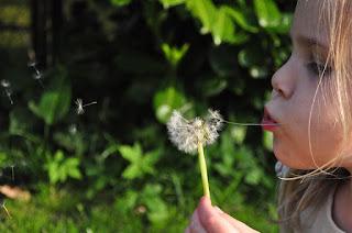 ALLERGIE DEI BAMBINI E GRAVIDANZA bambinimamme