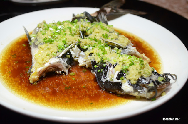 Steamed Cat Fish With Minced Ginger