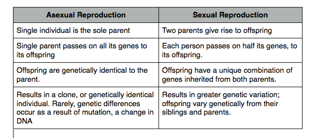 Advantages of sexual reproduction versus asexual reproduction