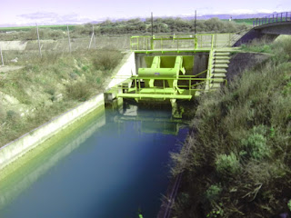 Canal de Monegros, almenara Acequia de La Violada