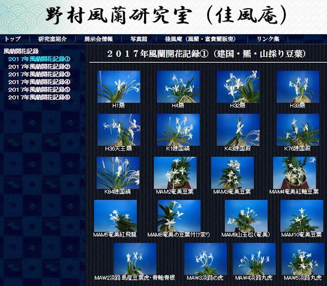 http://www.fuuran.jp/fuuranhana_2017_1.html