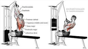 back and biceps workout, CLOSE GRIP LAT PULLDOWN