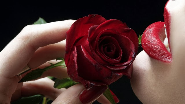 Hindi Rose Day Sms Latest Romantic Messages Shayari Rose Day Date