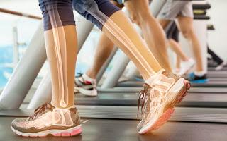 Huesos de las piernas