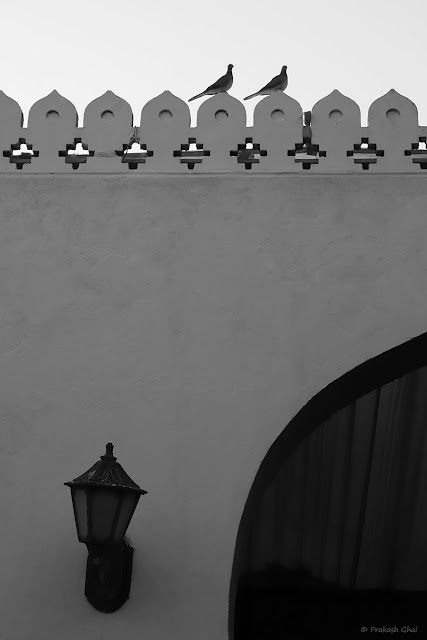 A Black and White Minimal Art Photograph of Two Birds Sitting on the Patterned Side Railing of a wall at Diggi Palace Jaipur.