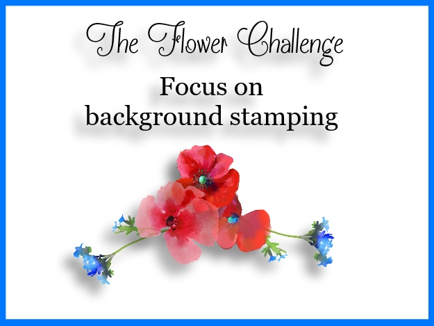 the flower challenge the flower challenge 11 focus on