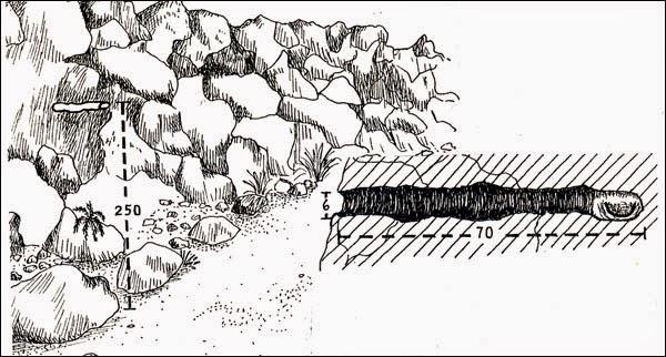 nido de Bandurrita