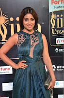 Shriya Saran in Beautiful Transparent Dark Gown IIFA Utsavam Awards 2017 037.JPG