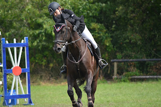 A black horse with a rider cantering around a blue and red jump at a showjumping competition.