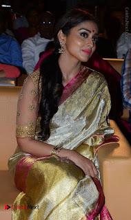 Actress Shriya Saran New Images in Silk Saree at Gautamiputra Satakarni Audio Launch  0008.jpg