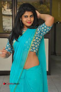 Telugu Actress Alekhya Stills in Green Saree at Swachh Hyderabad Cricket Press Meet  0076.JPG