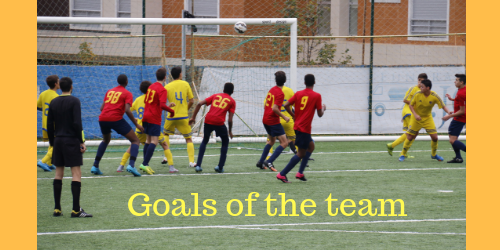 Vision Goals of the team