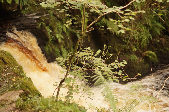 Henrhyd falls and Nant Valley walk to Abercraf
