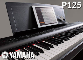 https://auvisa.com/blog/544_yamaha-p125.html