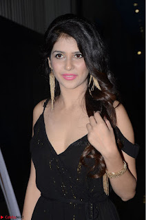 Kashish Vohra at Rogue Movie Audio Launch ~  (9).JPG
