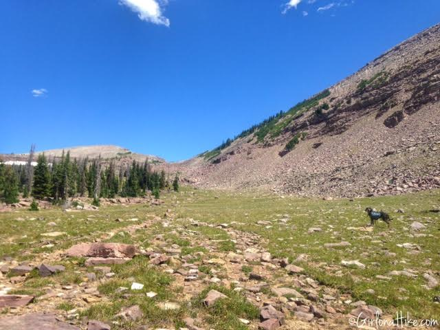 Backpacking to Rock Creek Basin, High Uintas, Rocky Sea Pass