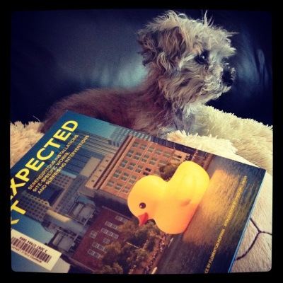 Murchie lays on his fuzzy pillow, ears perked as he watches something outside the frame. beside him is a paperback copy of Unexpected Art. Its cover features an enormous, inflatable rubber duck floating in an urban harbour.