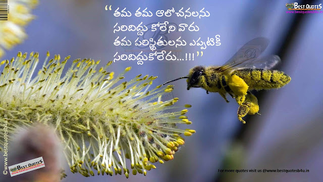 inspiring good evening quotes in Telugu