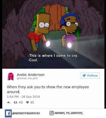 New employee memes