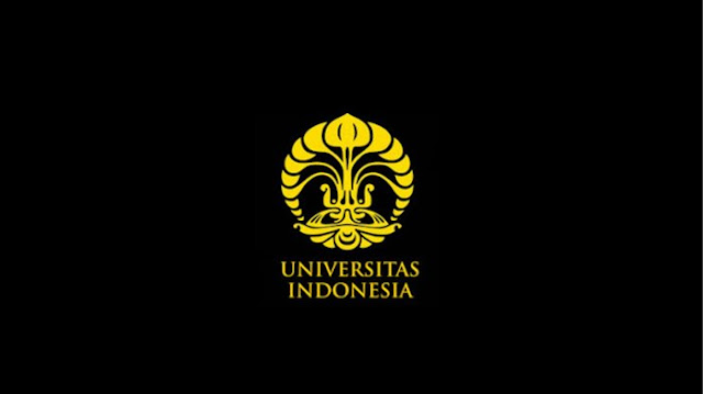 Pilihan International University di Universitas Indonesia