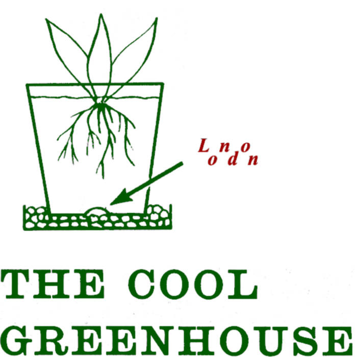 New COOL GREENHOUSE single