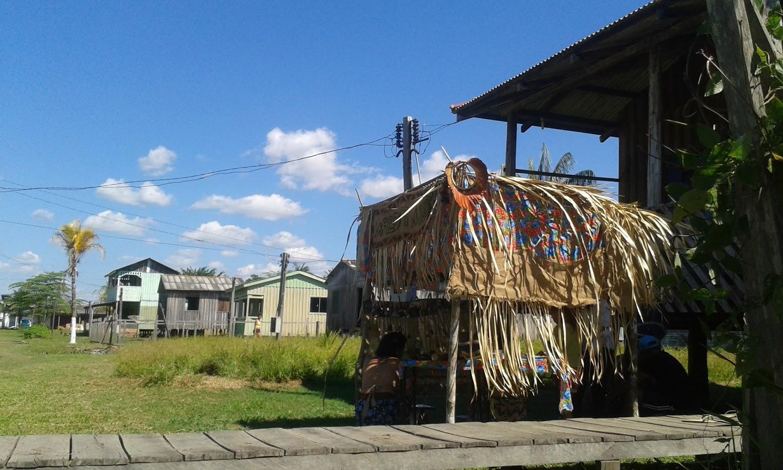 """Resultado de imagem para """"vila de Nazaré"""" rio madeira"""