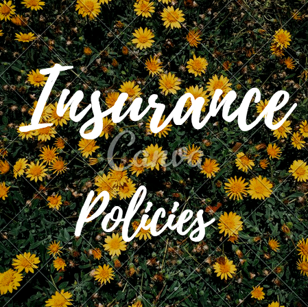 Insurance Policies To Consider in 2017
