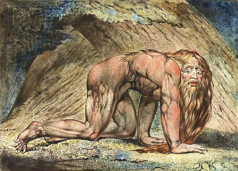 Pride of Nebuchadnezzar that caused his insanity and an animal-like existence